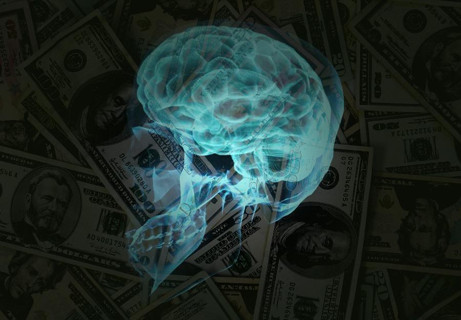 Neuroscience of wealth